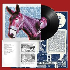 PROTOMARTYR – Ultimate Success Today